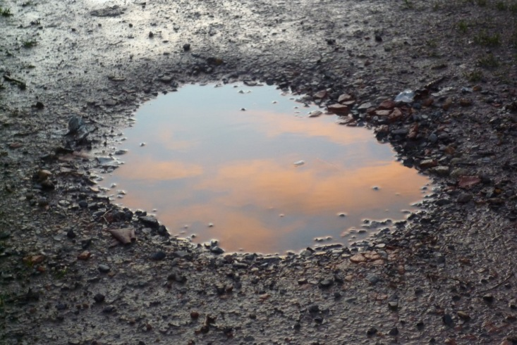 puddle sunset